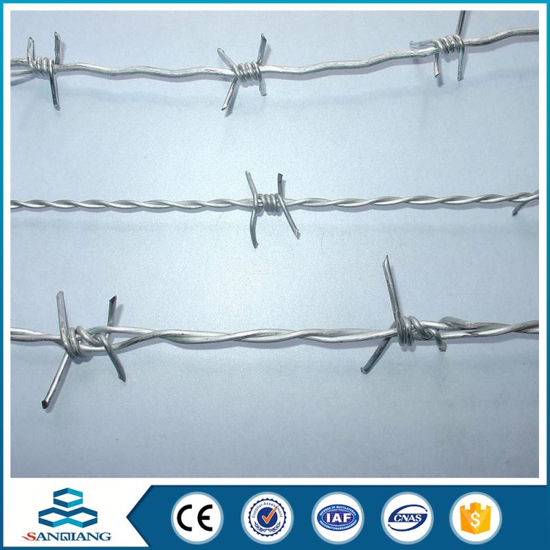 hebei galvanized safety razor barbed wire